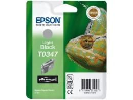 Epson 2100 Light Black blekk T0347