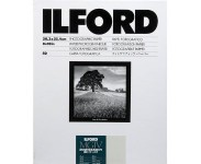Ilford MG-4 44M