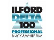 Ilford Delta 100 4x5