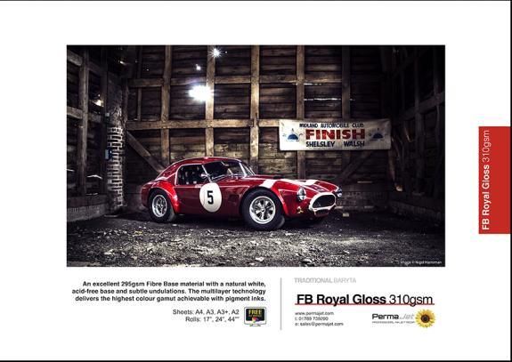 FB-Royal-Gloss-310