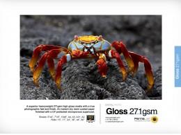 Permajet Gloss 271 A3 25pkn