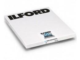 Ilford_Delta_100_8x10