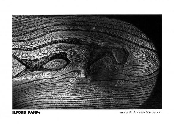 panfplus_image