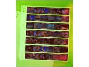 Clear file 135 7x6 PP - 25bl (14B)