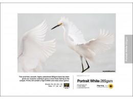 Permajet Portrait White 285 A3 25pk
